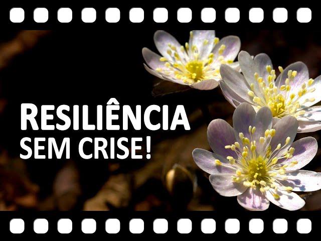 A Resili�ncia � o Poder de passar pela Crise e aprender ao m�ximo com a viv�ncia!